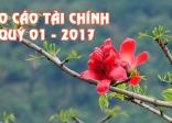 BTN Ánh Đạo: Báo cáo tài chính quý 01 – 2017