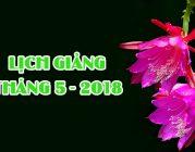 Lịch thuyết giảng cuối tháng 5 – 2018 (Có cập nhật)